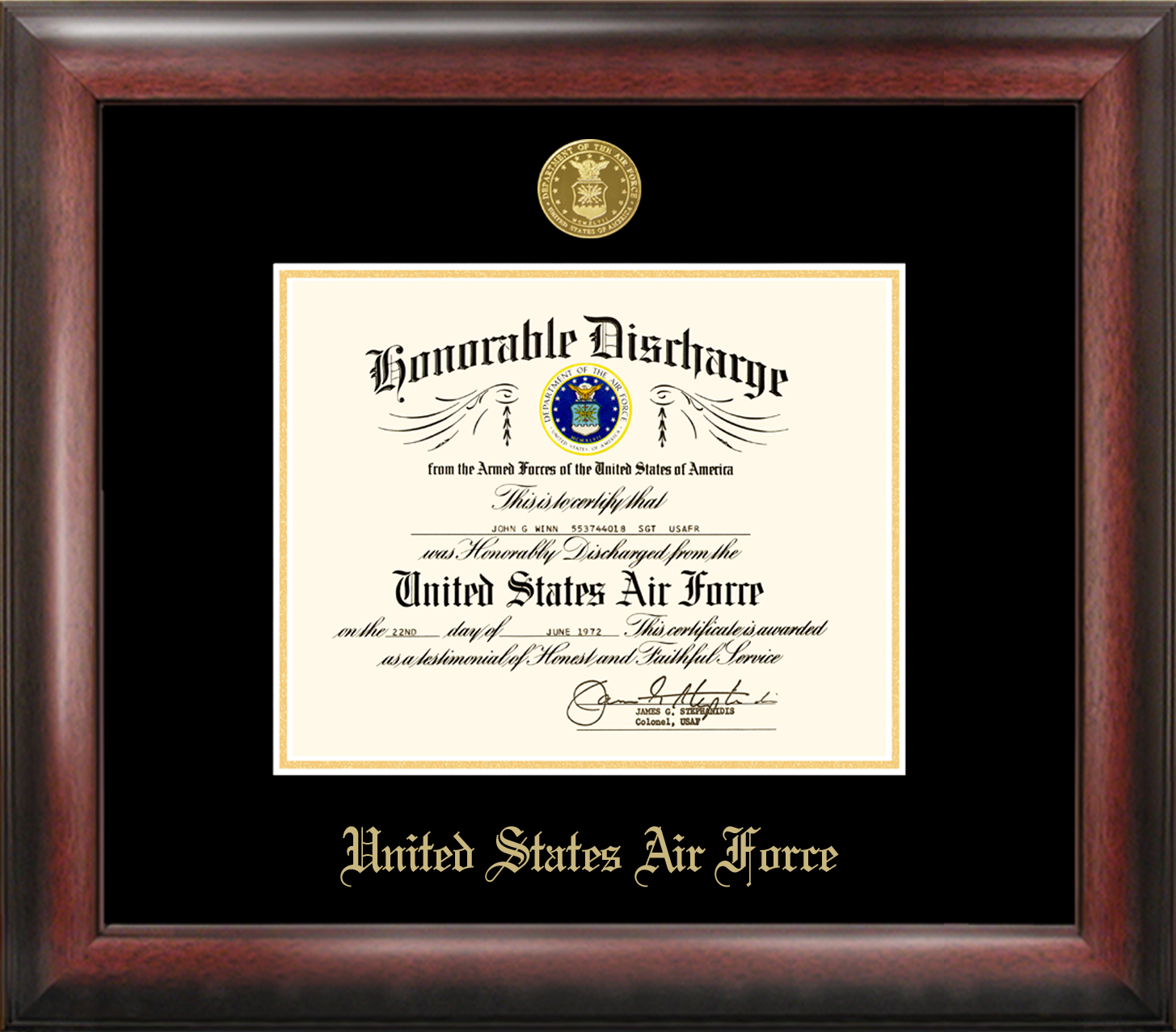 Air Force Discharge Frame Gold Medallion