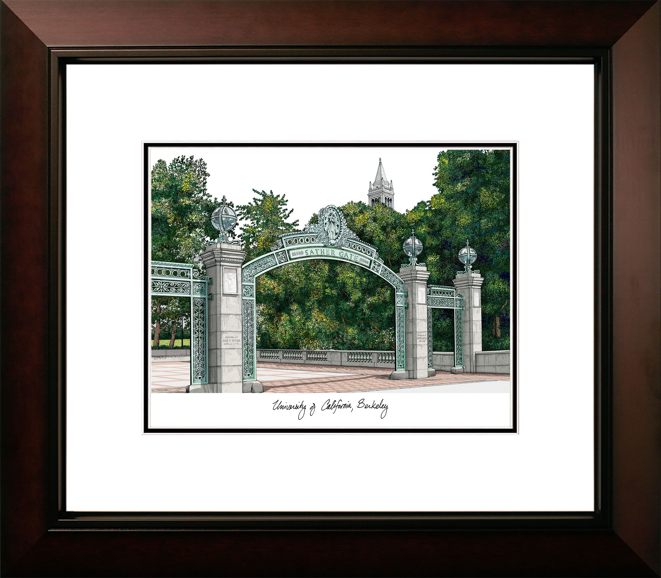 University of California, Berkeley  Legacy Alumnus Framed Lithograph