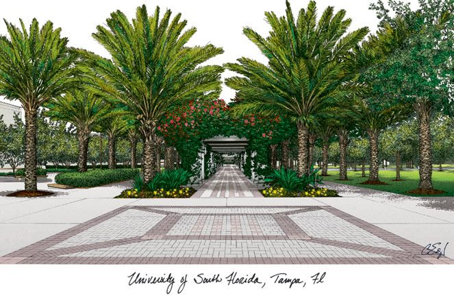 University of South Florida Campus Images Lithograph Print