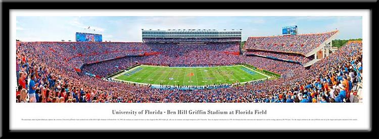 University of Florida Framed Stadium Print