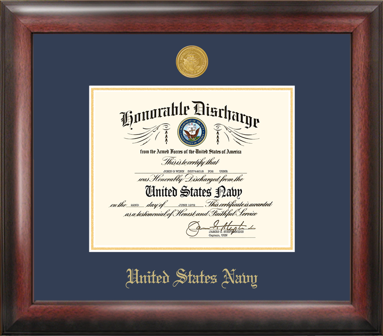 Navy Discharge Frame Gold Medallion