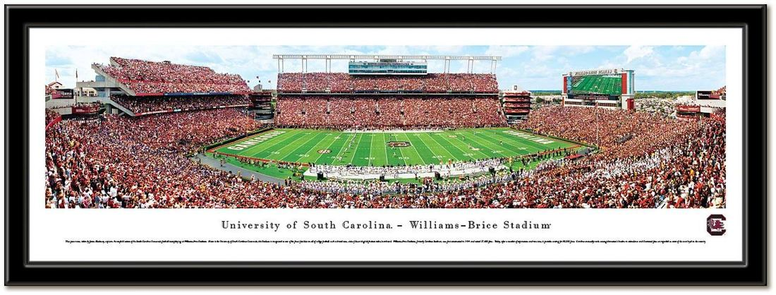 University of South Carolina Framed Stadium Print