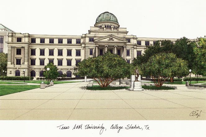 Texas A&M University Campus Images Lithograph Print